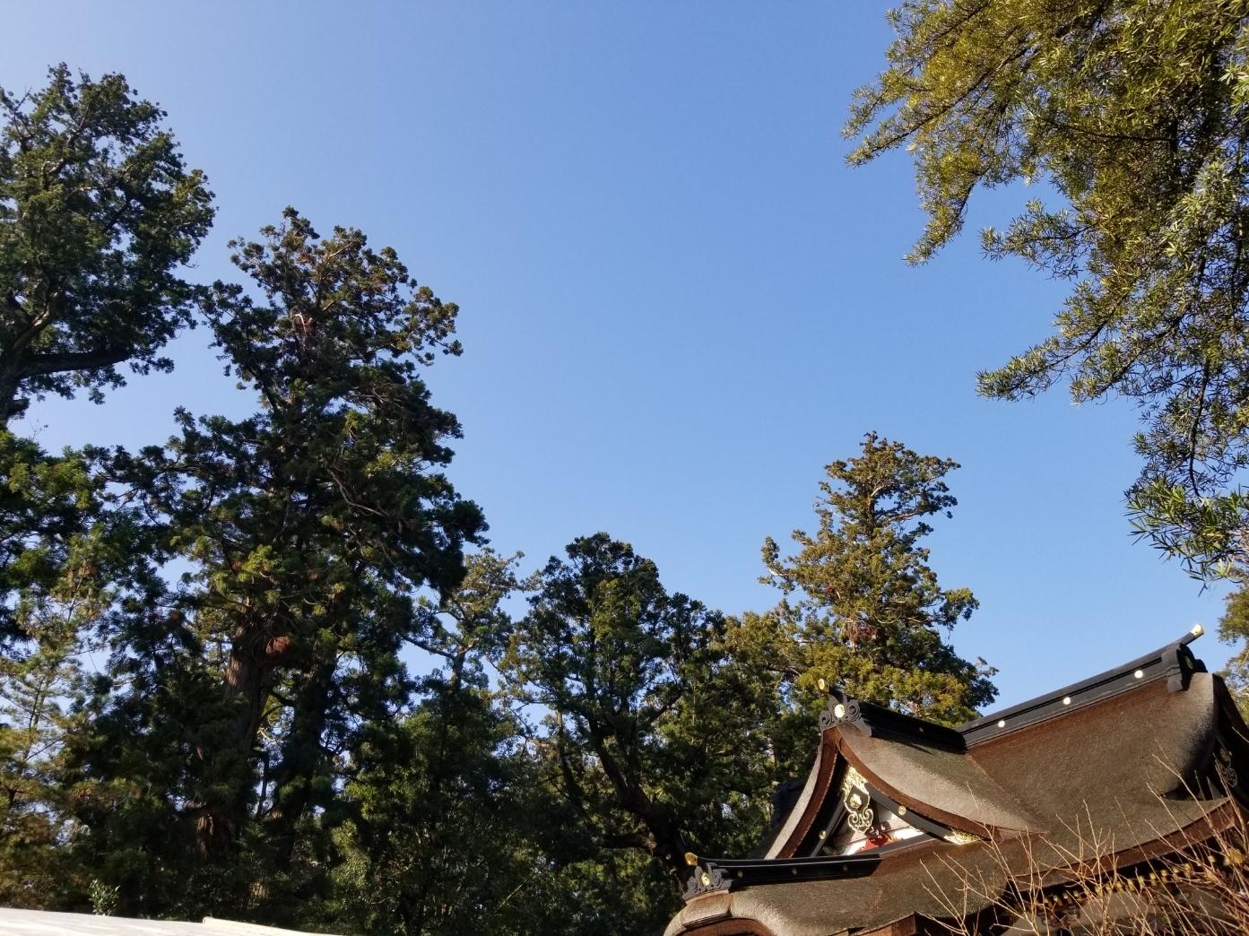 20200103_香取神宮と青空.jpg